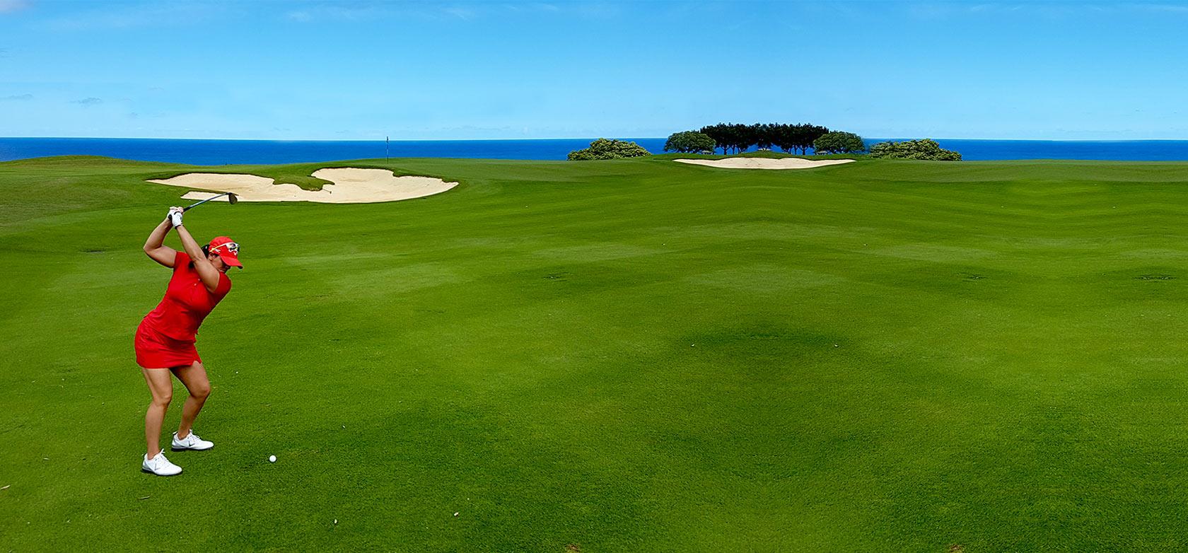 Lisa Longball Golf Banner